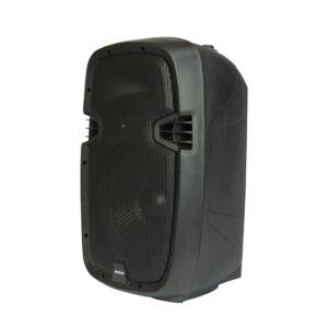 caixa de som acustica com 2 microfones sem fio